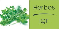 Darégal - Industrie - Herbes IQF Aromatiques